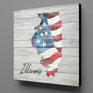 Canvas Wall Art - US Flag Illinois